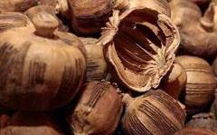 罂粟壳的功效与作用_中药罂粟壳图片